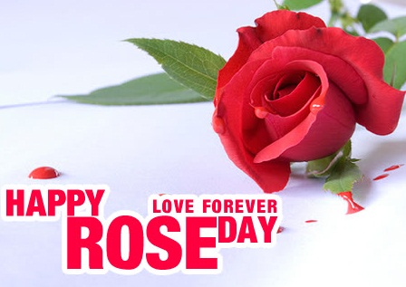 7-Feb-Happy-Rose-Day-2013-Greetings-Images-Pictures-Wallpapers-Wishes-2